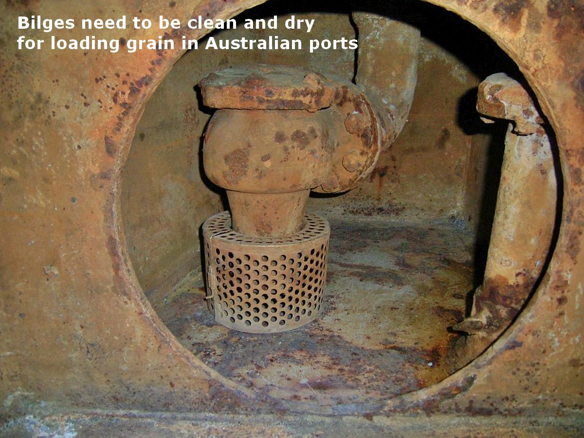 clean and dry ship's cargo hold bilge